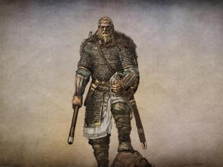 HD Wallpaper | Background Image mount & blade, hero, story