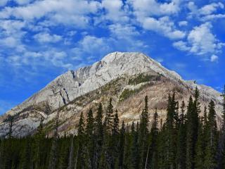 mountain, peak, trees wallpaper