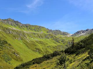 mountains, grass, tyrol wallpaper