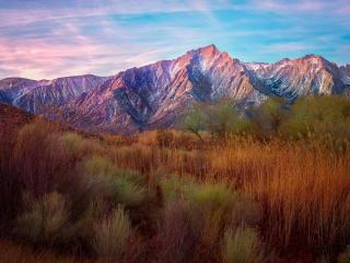 mountains, reeds, grass wallpaper