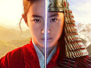 Mulan as Warrior Poster wallpaper