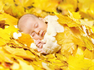 New Born Baby Sleeping Photoshoot wallpaper