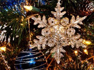 new year, holiday, tree wallpaper