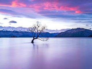 New Zealand Lake View wallpaper