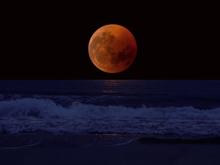 Orange Moon near the Horizon wallpaper