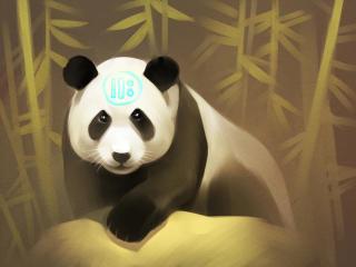 panda, art, bamboo wallpaper