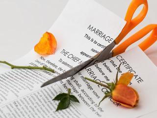 paper, scissors, rose wallpaper