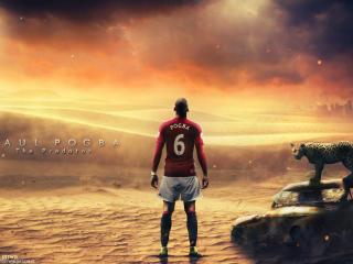 Paul Pogba Manchester United wallpaper