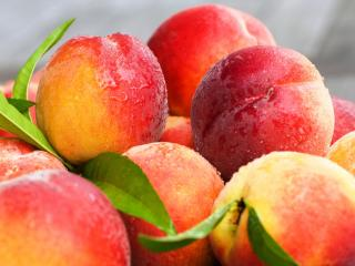 peaches, nectarines, leaves wallpaper