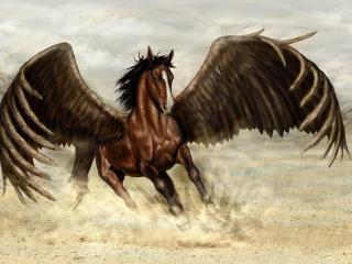 pegasus, horse, wings wallpaper