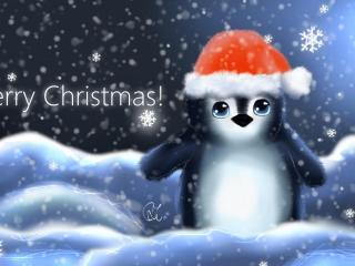 penguin, hat, cub wallpaper