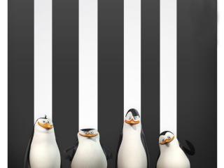 Penguins Of Madagascar HD Desktop Wallpapers wallpaper