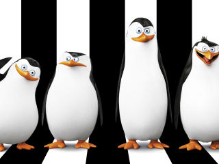 Penguins Of Madagascar HD Wallpapers  wallpaper