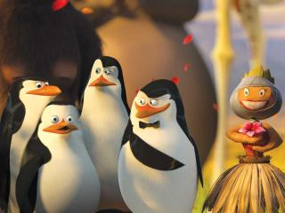 Penguins Of Madagascar Movie HD Wallpapers wallpaper