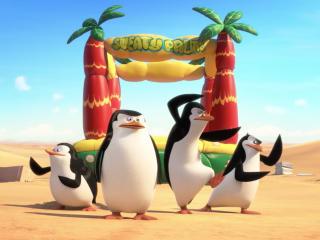 Penguins Of Madagascar Movie Pics wallpaper