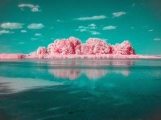 Photography Infrared 4k wallpaper