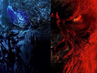 Poster of Godzilla vs Kong 201 wallpaper