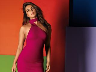 Priyanka Chopra Hot In Pink wallpaper