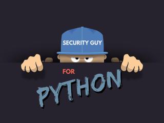 Python Programmer wallpaper