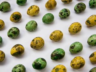quail eggs, easter, painted wallpaper
