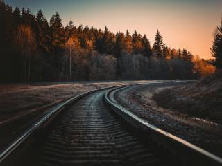 Railroad Forest Surrounding wallpaper