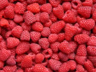 raspberry, berry, ripe wallpaper