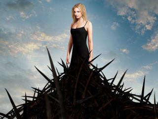 Revenge Emily VanCamp wallpaper