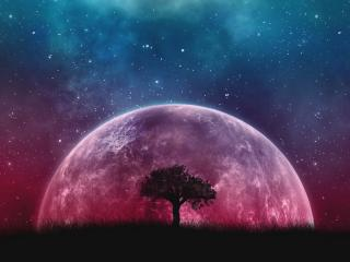 Rising Planet Behind Tree wallpaper