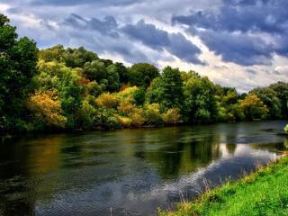 river, trees, herbs wallpaper