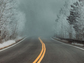 Road between Snow Covered Trees wallpaper