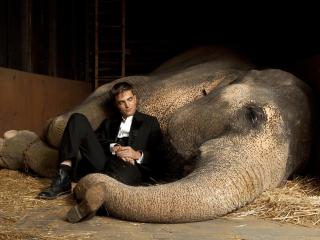 Robert Pattinson With Elephant wallpaper wallpaper