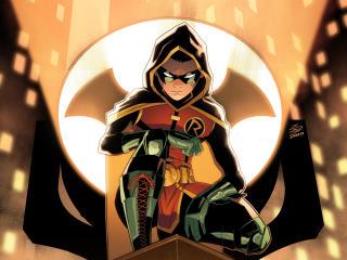 Robin Art DC wallpaper