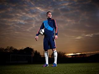 robin van persie, manchester united, footballer wallpaper