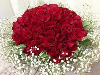 roses, gypsophila, bouquet wallpaper