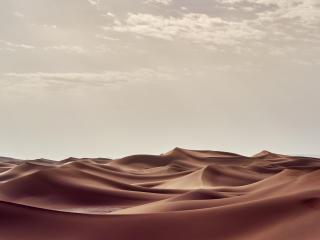 Sahara Desert in Summer wallpaper