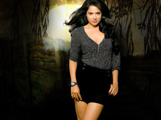 Sameera Reddy Sexy Stylish Wallpapers wallpaper