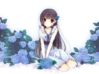 sankarea, girl, brunette wallpaper