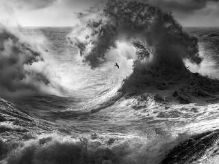 Sea With Big Waves Monochrome wallpaper
