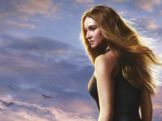 Shailene Woodley Divergent Actress wallpaper