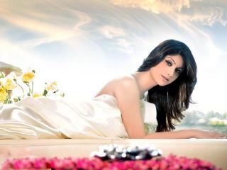 Shilpa Shetty Sexy HD Wallpapers wallpaper
