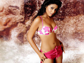 Shriya Saran In Hot Bikini HD Wallpaper  wallpaper