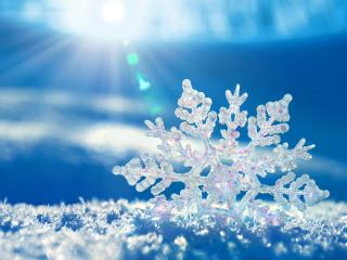 snowflake, shape, snow wallpaper