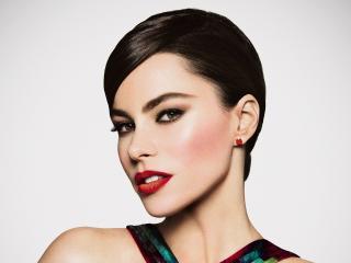 Sofia Vergara Brunette Make-up wallpaper