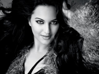 Sonakshi Sinha Sexy Pics wallpaper
