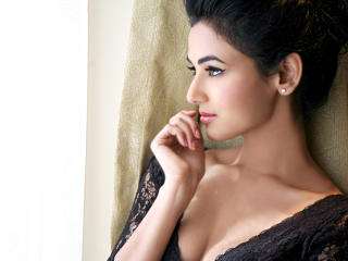 Sonal Chauhan Hot Cleavage Wallpapers  wallpaper
