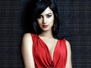 Sonal Chauhan In Red Dress  wallpaper