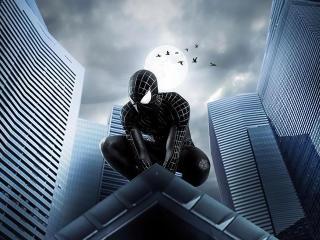 Spider Man Dark Knight wallpaper