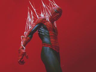 Spider-Man in the Web Digital Art wallpaper