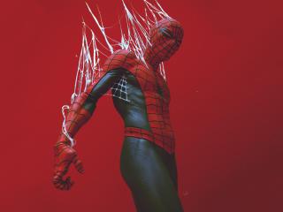 Spider-Man in the Web Digital Art wallpaper