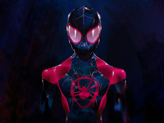 Spider-Man Into The Spider-Verse Movie wallpaper